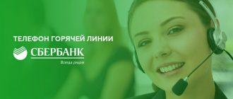 Телефон горячей линии Сбербанка, и как связаться с менеджером бесплатно круглосуточно