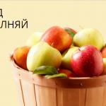 Основные условия вклада «Пополняй» в Сбербанке