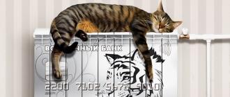 Карта «Тепло» от банка Восточный: основные характеристики популярного банковского продукта