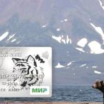 Кредитная карта Восточного банка: отзывы клиентов